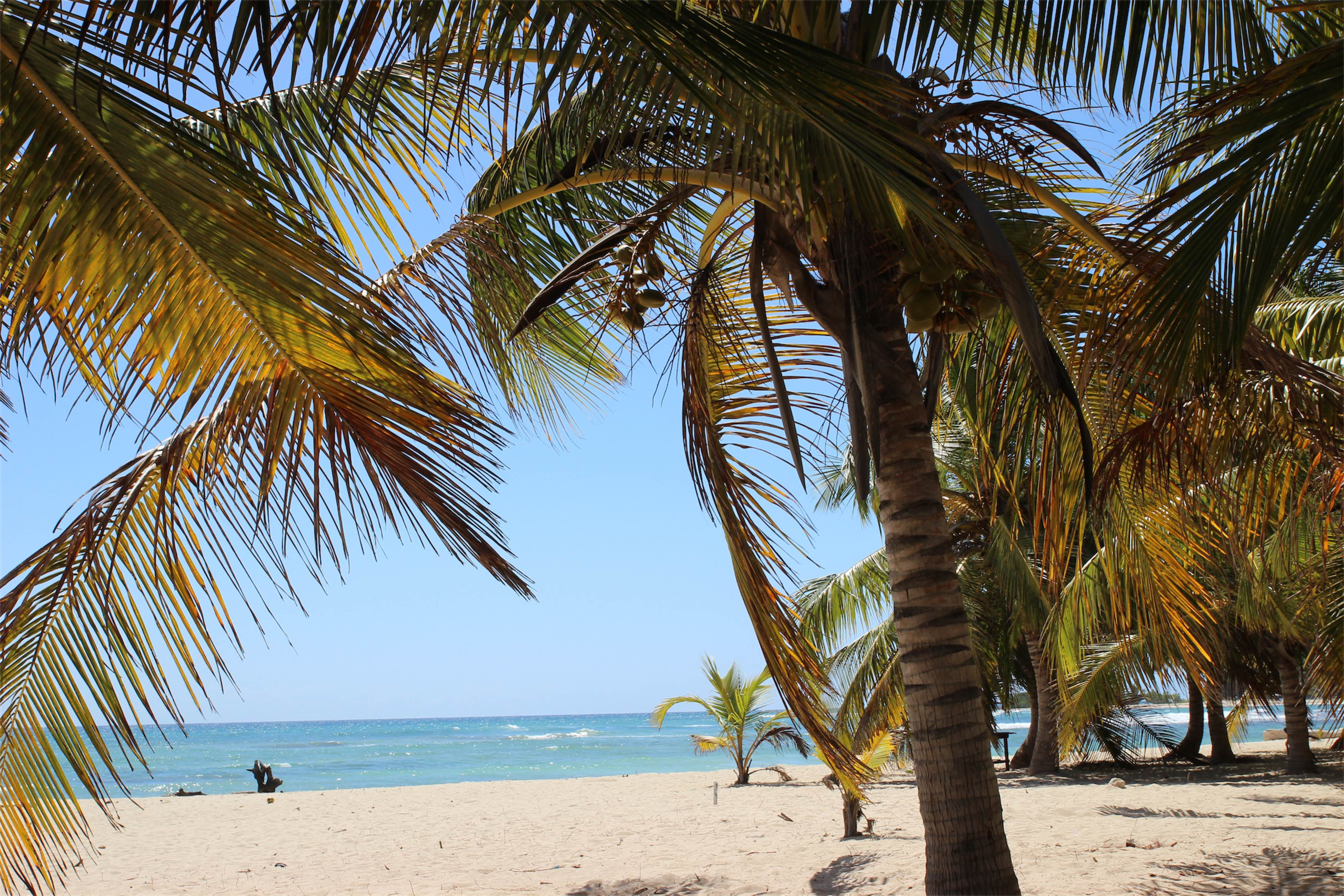 Dominikana - Filip Obara - Manufaktura Marzeń - plaża w Juan Dolio