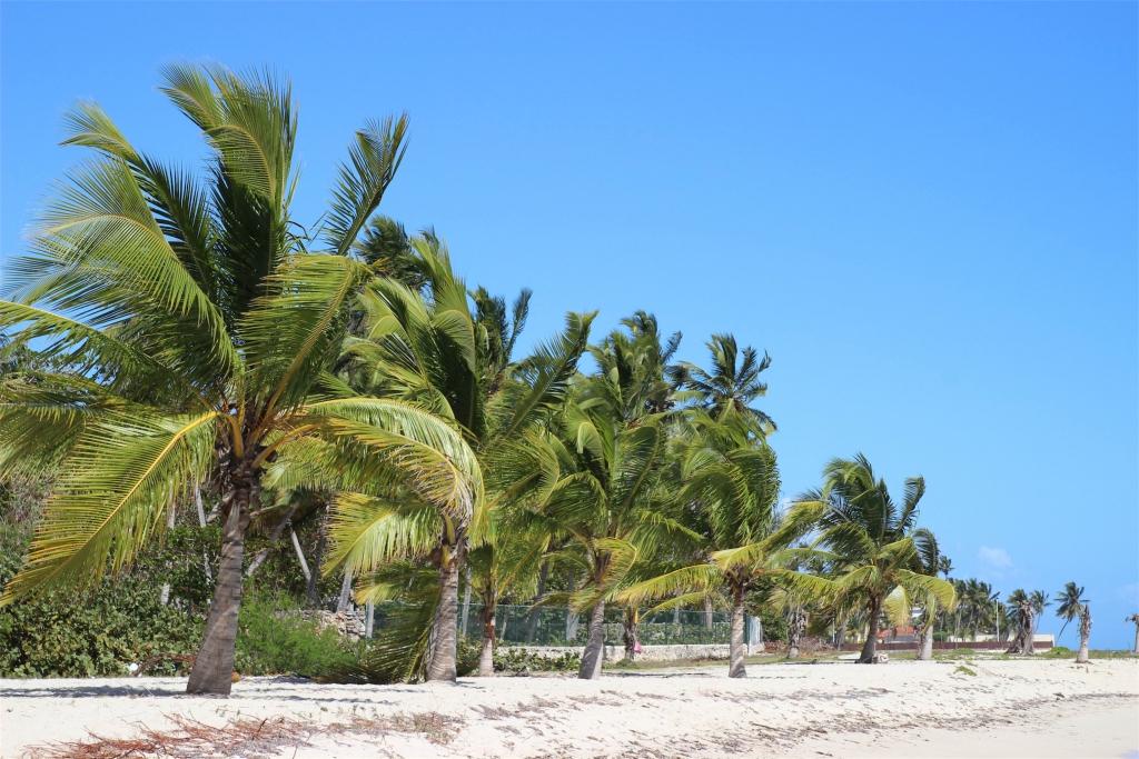 Dominikana - plaża w Juan Dolio - Manufaktura Marzeń - Filip Obara